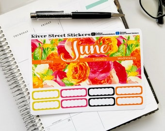 JUNE 2018 Summer Floral Erin Condren Life Planner Monthly Planner Sticker Kit