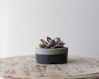 Mother's Day Gift for Her, Small Concrete Planter, Gray