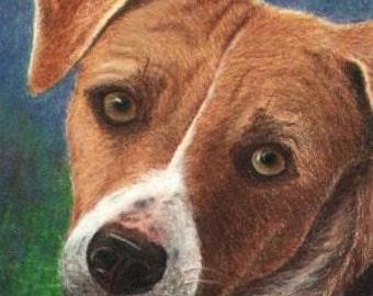Pet Portrait of YOUR Pet, Original Colored Pencil Custom Drawing