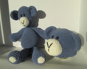 Blue Teddy Bear and Hat