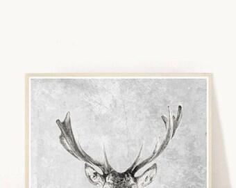 Stag Art Print, Deer Print, Printable Art, Animal Print, Instant Download, Modern Wall Art, Textured Print, HOme Decor, Wall Decor