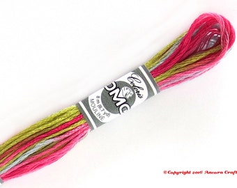 DMC 4502 Coloris Variegated 6 Strand Floss Camelia (Camellia)