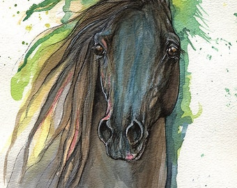 Black arabian horse, equine art, equestrian, horse  portrait,  original ink and watercolor painting