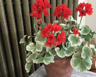 Crepe Paper Potted Red Geranium Plant