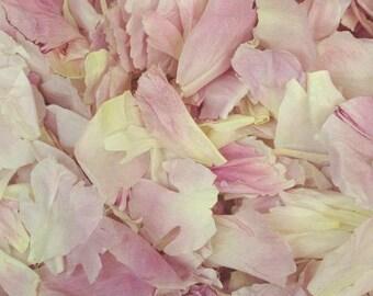 Peony Petals. Wedding Petals. 10 cups. Flower Petals. Flower Confetti. Petals. Freeze-dried petals. Aisle Petals. Petal Confetti. USA Made