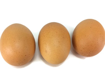Egg Artificial Lifelike Simulation Faux Fake Chicken Egg 3 Pieces
