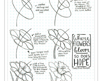 How To Draw a Daffodil Drawing Tutorial