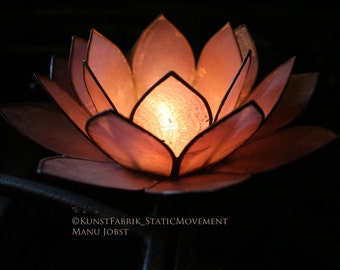 LOTUS LIGHT series 1  Original Color Art Photograph Print Wall Art Home Decor