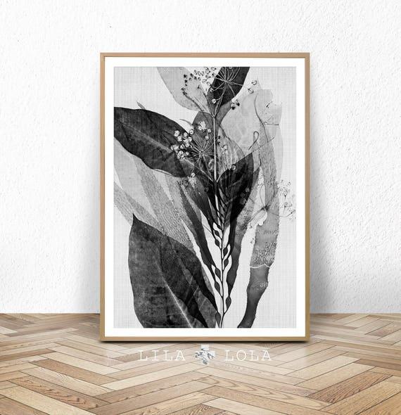 Botanical Print, Black and White Wall Art, Printable Digital Download, Abstract Plant Modern Minimalist, Large Poster Print, Nature Wall Art