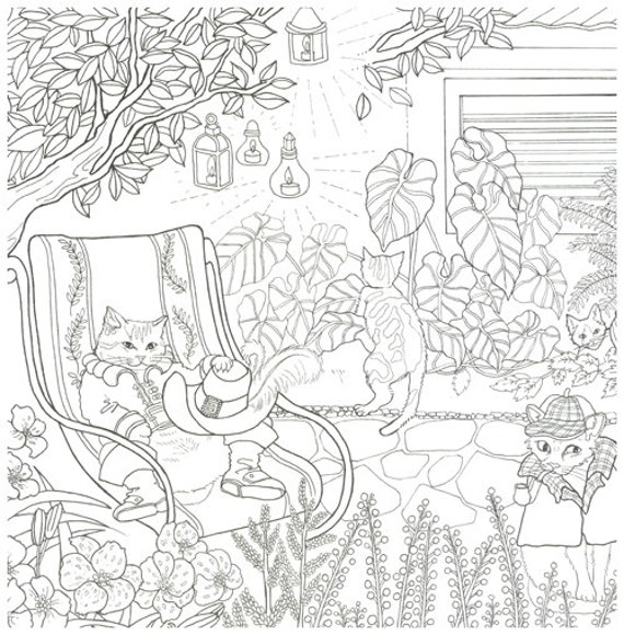 The cats Korean coloring book