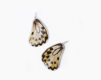 Real Butterfly earrings/ Real preserved laminated resining Butterfly Ear Dangles/ 925 sterling silver/ Female Ornithoptera priamus