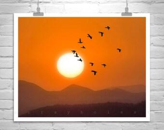 Sunset Photography, Flock of Birds, Birds in Flight, Flying Birds, Arizona Landscape Art, Gift for Bird Lover, Sunset Picture, Art on Canvas