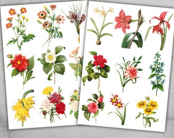 5 Printable Sheets - Vintage Flowers collection for scrapbooking, paper craft and art projects - VINTAGE FLOWERS COLLECTION