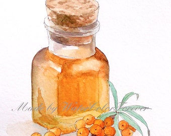 Original watercolor, sea buckthorn, watercolour painting, sea-buckthorn oil, gift, wall art, sea buckthorn drawing, sea buckthorn painting