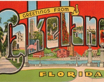 Linen Postcard, Greetings from Lakeland, Florida, Flamingos, Palms, Large Letter