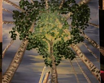 Birch Tree Sky