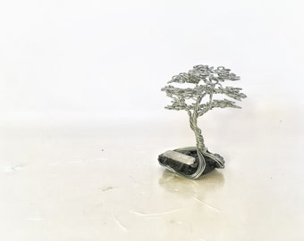 Mini Tree of life on Black Tourmaline with raw Selenite attached