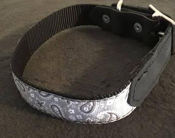 Gray Paisley Nylon/Leather Adjustable Dog Collar - FREE shipping