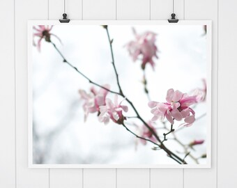 Pink Magnolia Print, flower photography, fine art print, wall decor, pink flowers, pink tree blossoms, nursery art, nursery decor