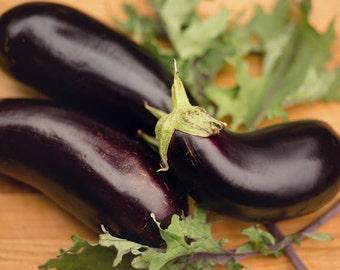 Food Photography - Kitchen Art - Eggplant Photograph - Dining Room Decor - Kitchen - Fine Art Photography Print - Purple Green Kitchen Decor