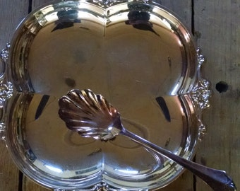 Oneida 2 piece Party Set Dish & Serving Spoon Silverplate