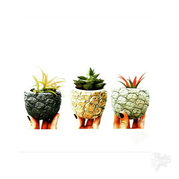Pineapple Planter/Gold Pineapple/Pineapple Lover/Succulent Planter/Pineapple Decor/Concrete Planter/Housewarming Gift/Metallic Pineapple