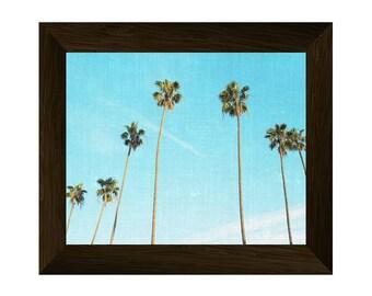 palm tree print, palm photography, tropical wall art, beach wall decor, california print, instant digital download, printable artwork