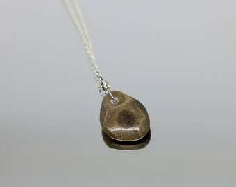 Petoskey Jewelry, Petite Wire-Wrapped Petoskey Stone Pendant on Sterling Silver Chain, Michigan Jewelry, Stone Necklace, Fossil Jewelry,