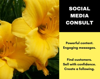 Social Media Consultation - Marketing Strategy - Etsy Marketing - Writing Service - Etsy Copywriting Service - Copy Writer - Ask for 50% Off