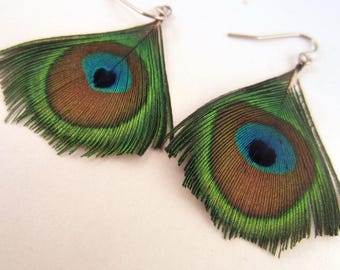 Feather Earrings Gold peacock natural
