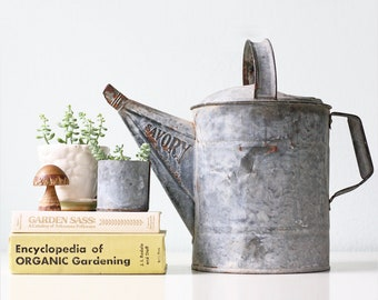 Vintage Watering Can, Savory, Galvanized Metal