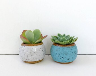 Turquoise Ceramic Planter / Small Pot for Succulents, Cactus, Air Plant / The Knoll Planter / READY TO SHIP