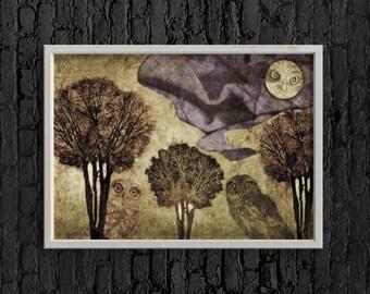 Notturno con rapaci download file digital print owl night