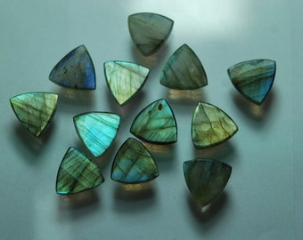 10 Pieces ,Labradorite Faceted Flat Back Trillion Shape,10 Piece of 14mm