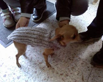 Sweater for small pet