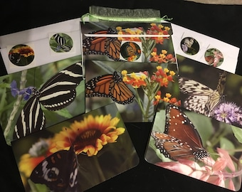 Beautiful 5 x 7 glossy butterfly notecards, blank on the inside to write your own personal message.