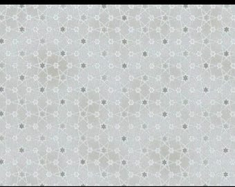 Magical Moments Metallic Silver Stars on Silver 4593-914 from Blank Quilting by the yard