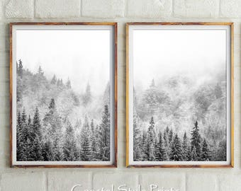 Set Of 2, Forest Prints, Scandinavian Wall Art, Forest Photography, Landscape, Wall Art, Black and White Photography, Prints, Scandi Print