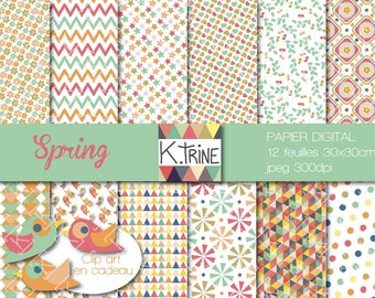Digital paper 12 sheets to print and 3clips art