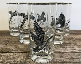 Federal Glass Game Bird Highball Glasses Mid Century Glassware Ring Necked Pheasant Grouse Canada Goose SET OF 6 Bird Lover Gift Hunter Gift