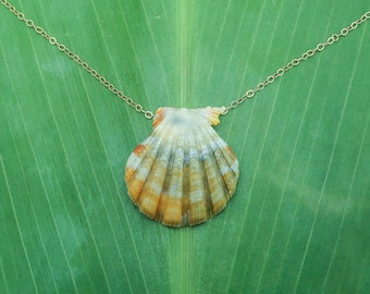 Bright and colorful sunrise shell necklace