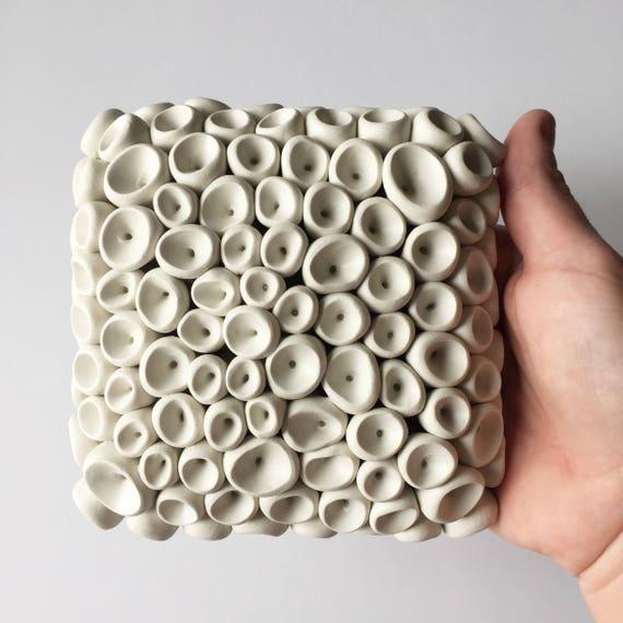 Cup Fungi Miniature Tile