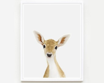 Baby Animal Nursery Art Print. Baby Deer Little Darling. Fawn Print. Animal Wall Art.  Animal Nursery Decor. Baby Animal Photo.