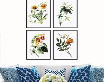 Botanical Print Set of 4 - Botanical Illustration - Art Prints - Posters - Botanical Art - Canvas Print Art Multiple Size Available - Flower