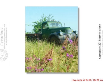 Chevy Truck Vintage Green Truck in a Field with Grasses Magenta Flowers and Blue Sky Vintage look Photo Old Truck in a Field
