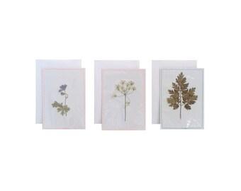 Droogbloem en droogblad I Set van 3 I Mini ansichtkaart/postcard