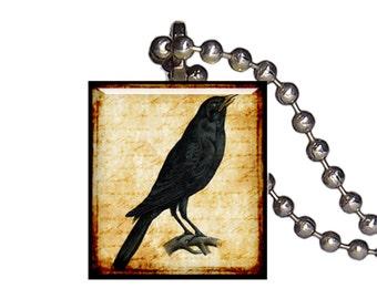 Vintage Raven Crow Blackbird - Reclaimed Scrabble Tile Pendant Necklace