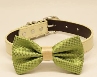 Green and Ivory Dog Bow Tie Collar, Birthday Accessory, Pet wedding