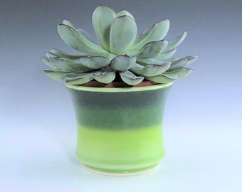 "Green Succulent Planter, Small Ceramic Planter, Porcelain Plant Holder, Green Indoor Planter, Pottery Planter With 3"" Removable Plastic Pot"