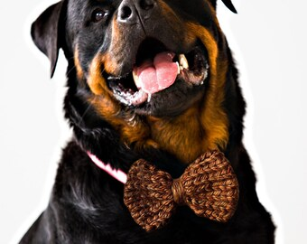 Brown Knit Dog Bow Tie! Vegan knit, hand knit, chunky knit, dog bow tie, dog bowtie, vegan gift